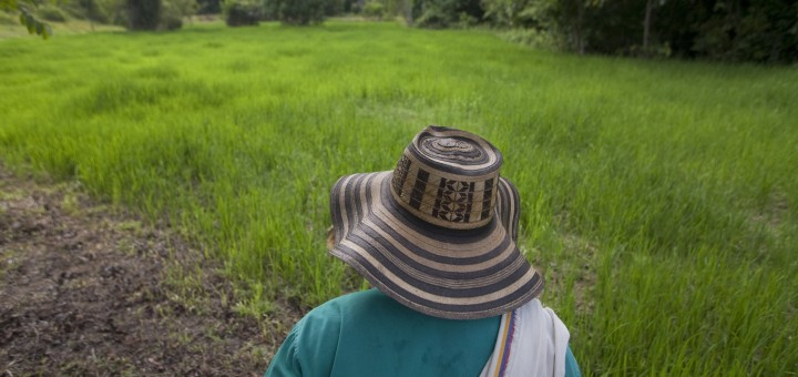 Colombia: Philanthropist's 101 Guide for SDG Investing