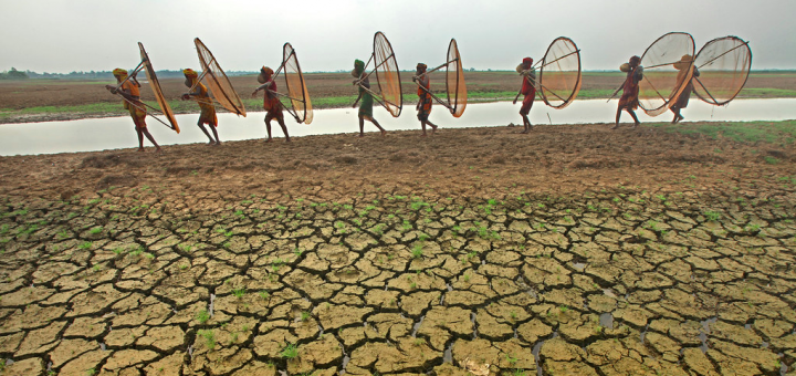 Curbing Desertification in China