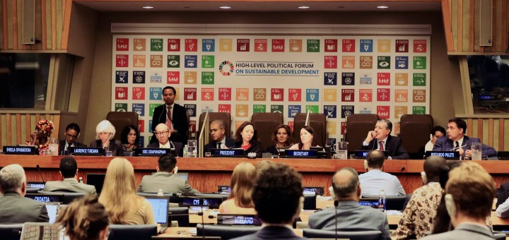The 2019 High Level Political Forum on SDGs